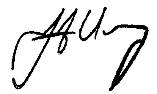 mayorsignature
